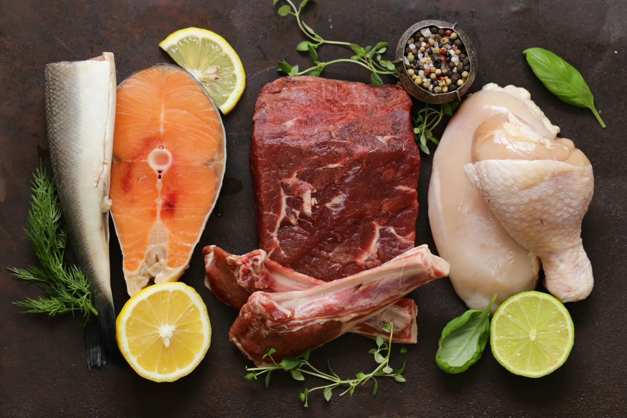 Eiweißreiche Ernährung – stark eiweißhaltige Lebensmittel